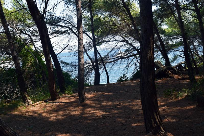 Île Marguerite2