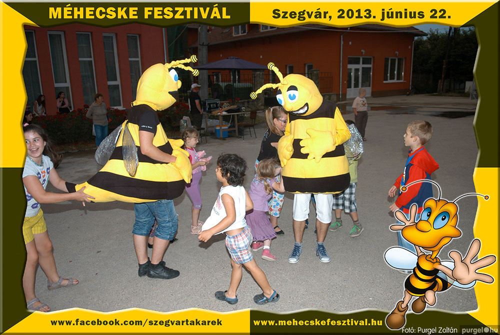 2013.06.22. 355 Szegvár és Vidéke Tak. Szöv. - Méhecske Fesztivál 2013. - Fotó:PURGEL ZOLTÁN©.jpg