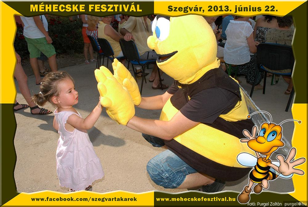 2013.06.22. 175 Szegvár és Vidéke Tak. Szöv. - Méhecske Fesztivál 2013. - Fotó:PURGEL ZOLTÁN©.jpg
