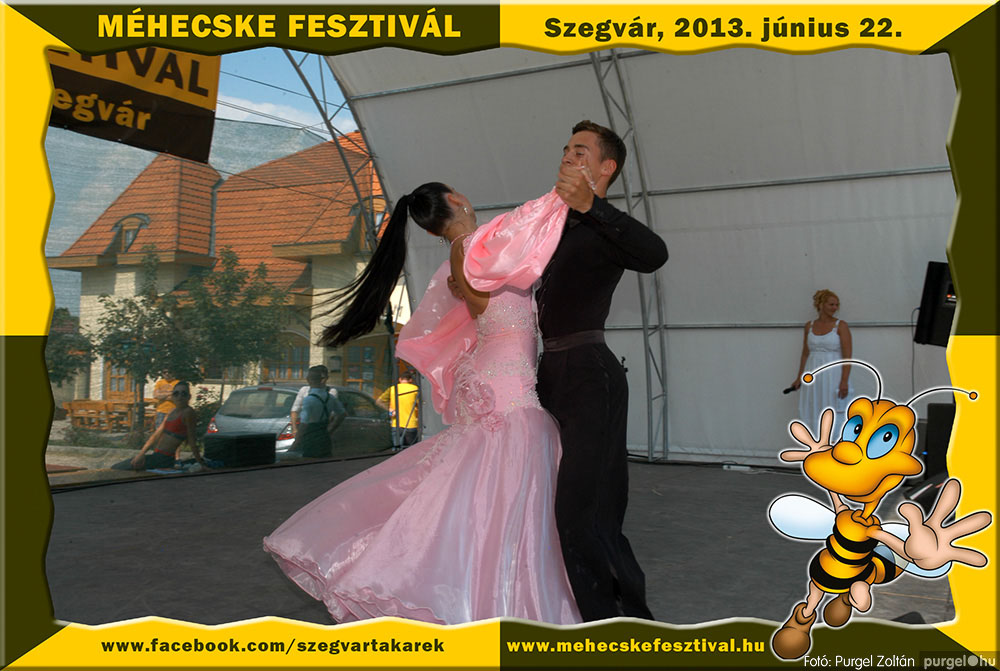 2013.06.22. 139 Szegvár és Vidéke Tak. Szöv. - Méhecske Fesztivál 2013. - Fotó:PURGEL ZOLTÁN©.jpg
