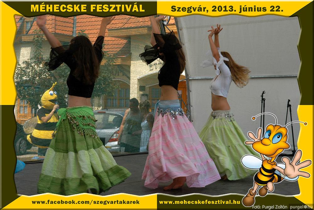 2013.06.22. 104 Szegvár és Vidéke Tak. Szöv. - Méhecske Fesztivál 2013. - Fotó:PURGEL ZOLTÁN©.jpg
