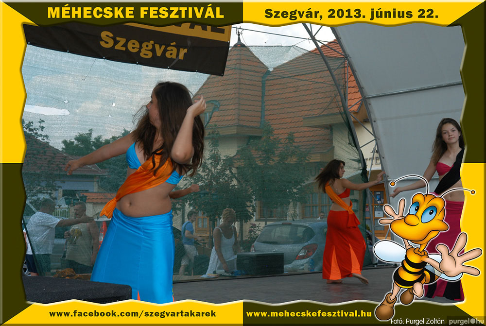 2013.06.22. 090 Szegvár és Vidéke Tak. Szöv. - Méhecske Fesztivál 2013. - Fotó:PURGEL ZOLTÁN©.jpg