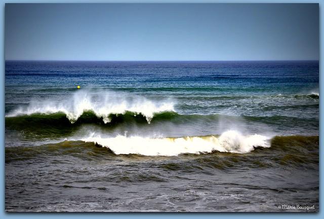 Méditerranée en fin de journée venteuse