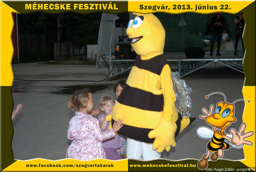 2013.06.22. 349 Szegvár és Vidéke Tak. Szöv. - Méhecske Fesztivál 2013. - Fotó:PURGEL ZOLTÁN©.jpg