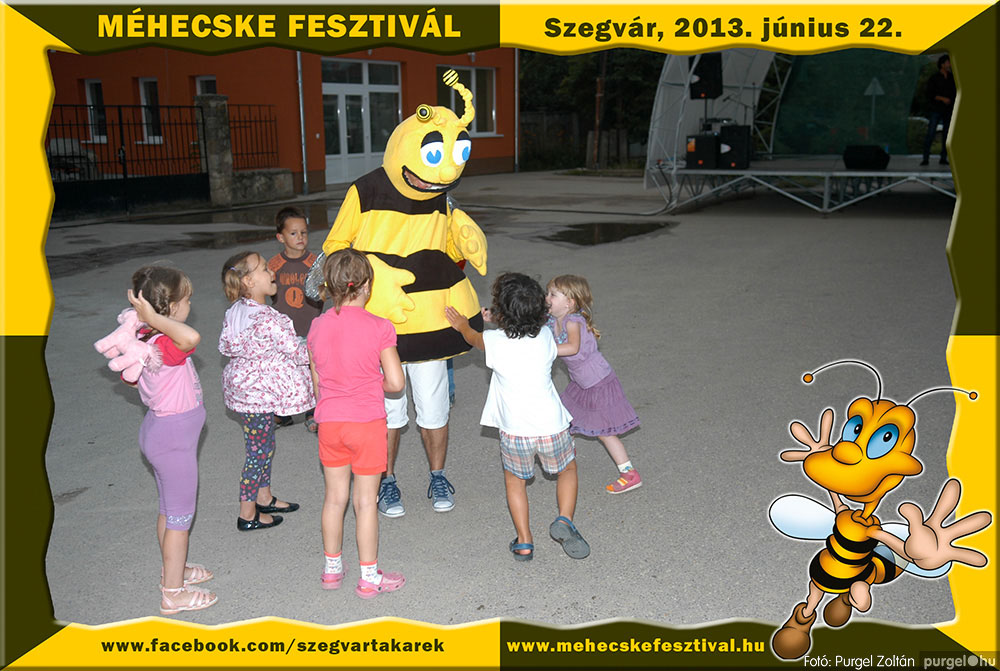 2013.06.22. 344 Szegvár és Vidéke Tak. Szöv. - Méhecske Fesztivál 2013. - Fotó:PURGEL ZOLTÁN©.jpg