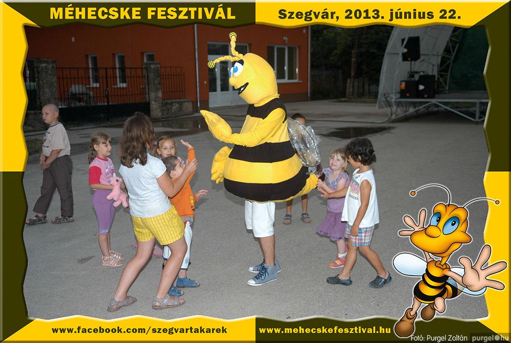 2013.06.22. 342 Szegvár és Vidéke Tak. Szöv. - Méhecske Fesztivál 2013. - Fotó:PURGEL ZOLTÁN©.jpg