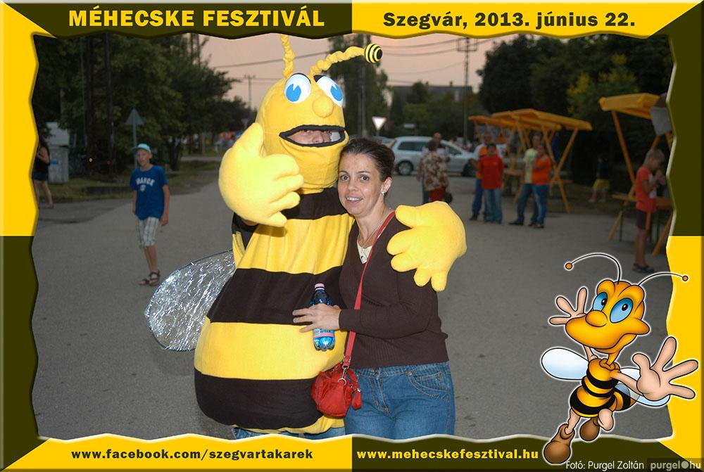 2013.06.22. 341 Szegvár és Vidéke Tak. Szöv. - Méhecske Fesztivál 2013. - Fotó:PURGEL ZOLTÁN©.jpg