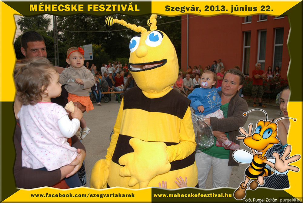 2013.06.22. 338 Szegvár és Vidéke Tak. Szöv. - Méhecske Fesztivál 2013. - Fotó:PURGEL ZOLTÁN©.jpg