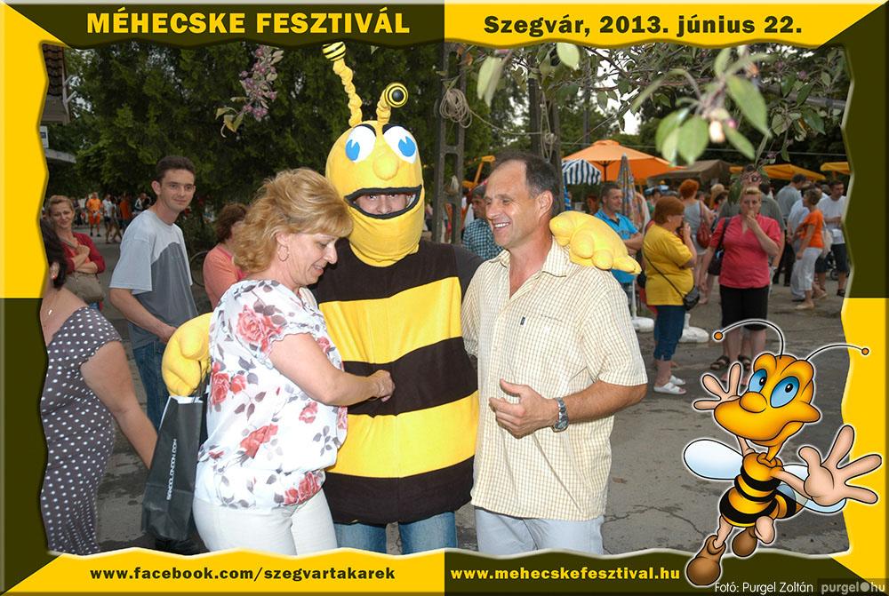 2013.06.22. 317 Szegvár és Vidéke Tak. Szöv. - Méhecske Fesztivál 2013. - Fotó:PURGEL ZOLTÁN©.jpg