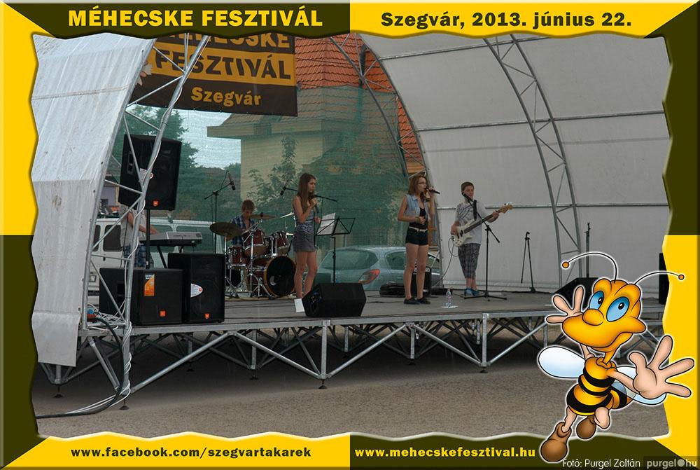 2013.06.22. 246 Szegvár és Vidéke Tak. Szöv. - Méhecske Fesztivál 2013. - Fotó:PURGEL ZOLTÁN©.jpg