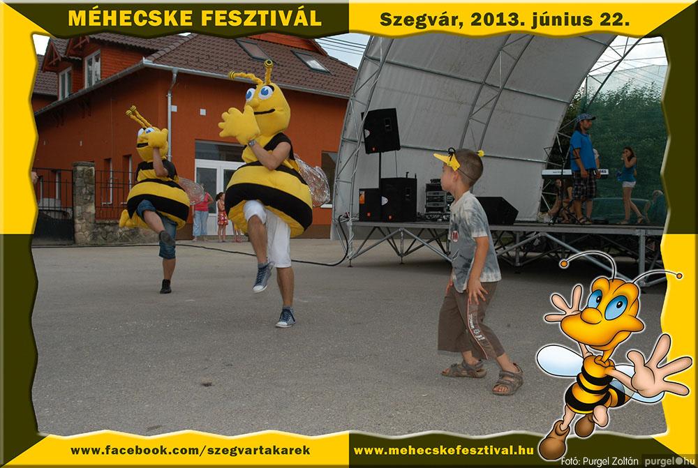 2013.06.22. 231 Szegvár és Vidéke Tak. Szöv. - Méhecske Fesztivál 2013. - Fotó:PURGEL ZOLTÁN©.jpg