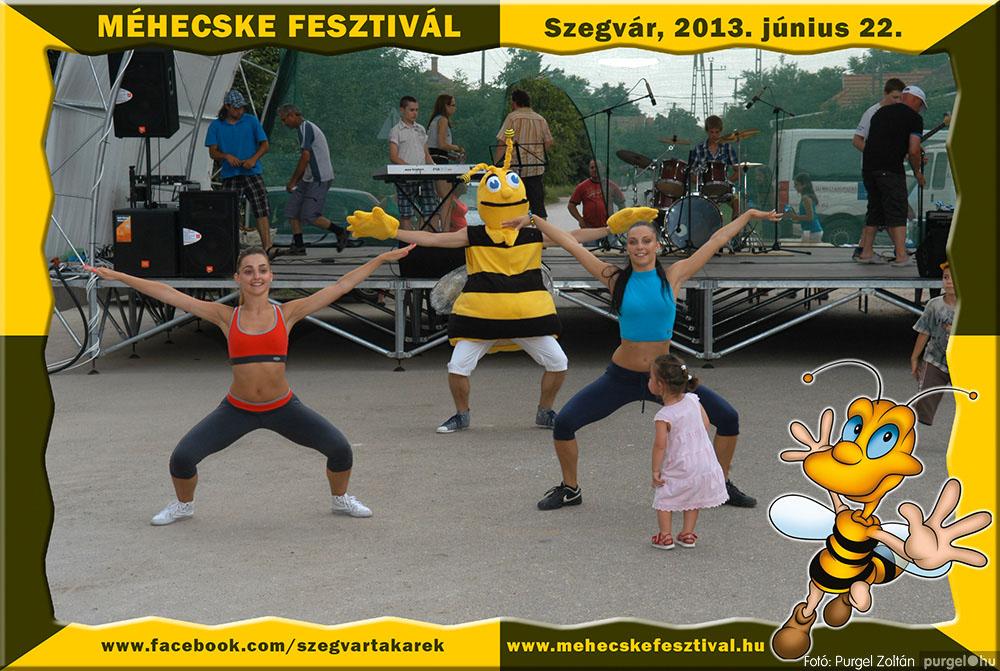 2013.06.22. 227 Szegvár és Vidéke Tak. Szöv. - Méhecske Fesztivál 2013. - Fotó:PURGEL ZOLTÁN©.jpg
