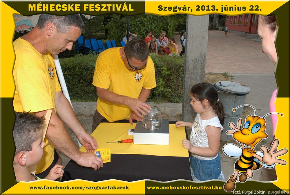 2013.06.22. 222 Szegvár és Vidéke Tak. Szöv. - Méhecske Fesztivál 2013. - Fotó:PURGEL ZOLTÁN©.jpg