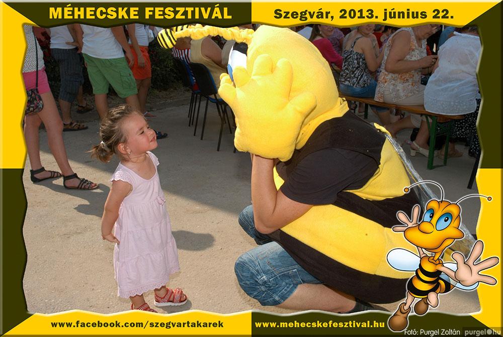 2013.06.22. 172 Szegvár és Vidéke Tak. Szöv. - Méhecske Fesztivál 2013. - Fotó:PURGEL ZOLTÁN©.jpg