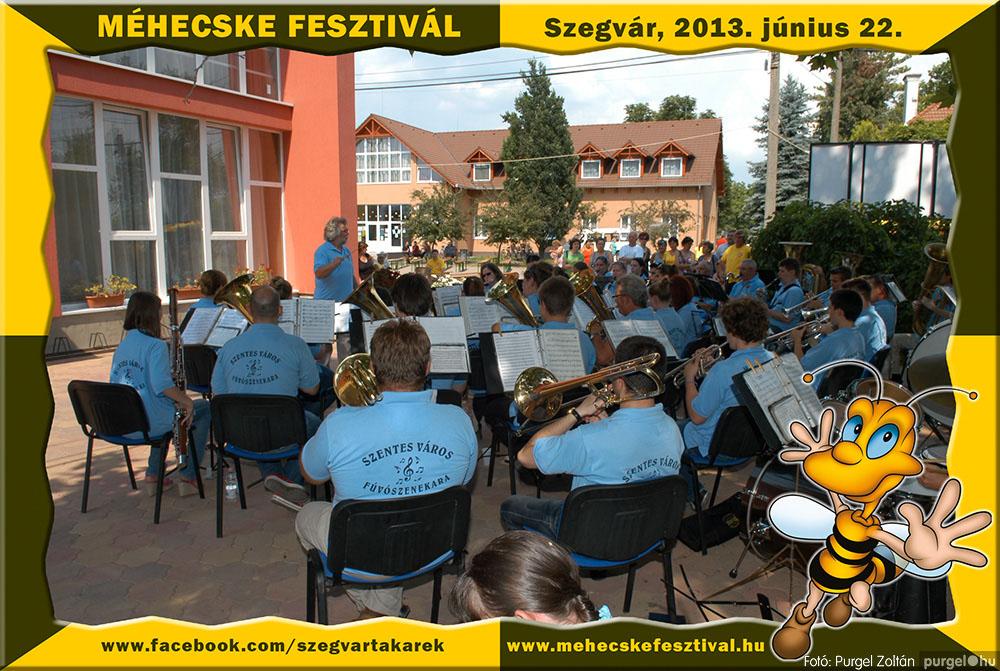 2013.06.22. 124 Szegvár és Vidéke Tak. Szöv. - Méhecske Fesztivál 2013. - Fotó:PURGEL ZOLTÁN©.jpg