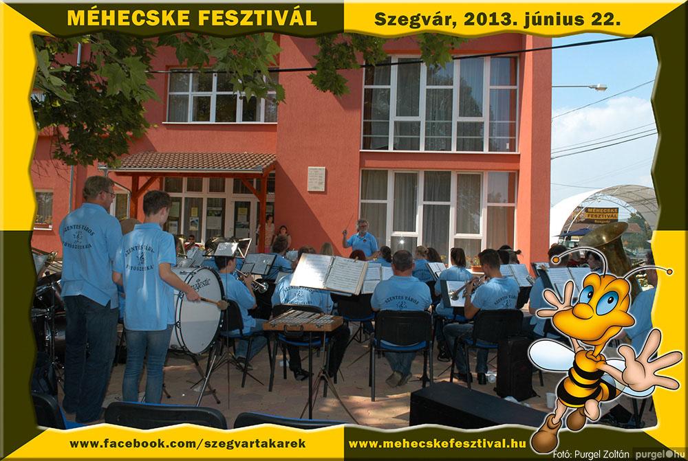 2013.06.22. 122 Szegvár és Vidéke Tak. Szöv. - Méhecske Fesztivál 2013. - Fotó:PURGEL ZOLTÁN©.jpg