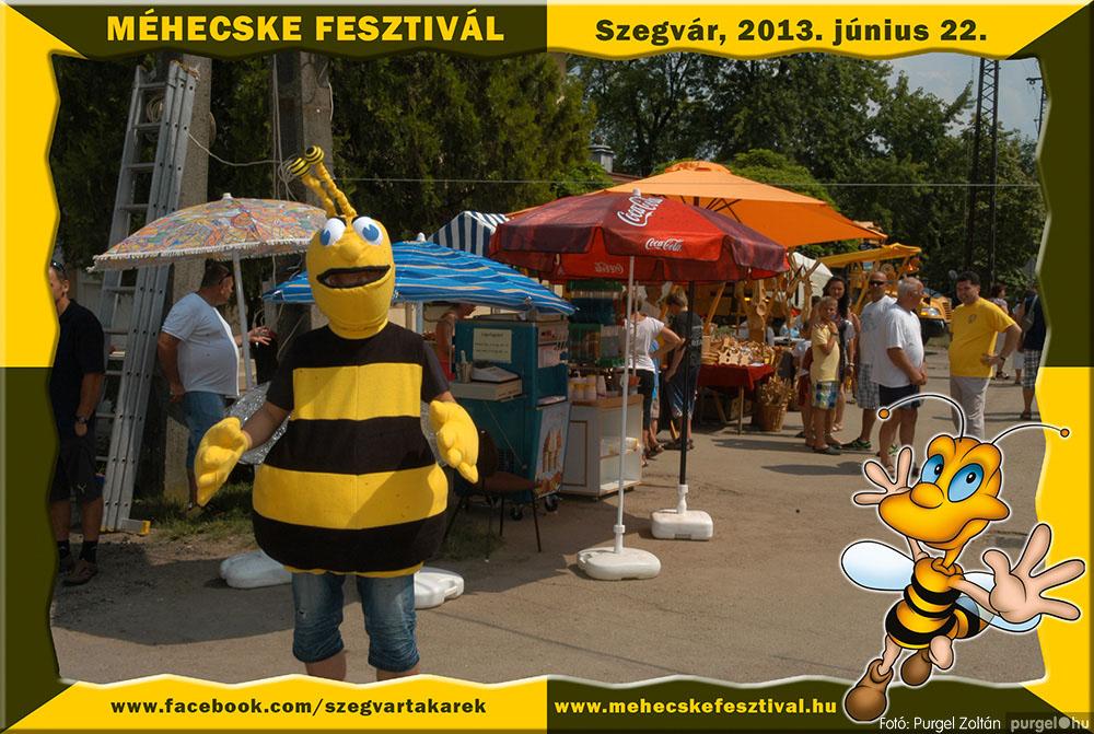 2013.06.22. 096 Szegvár és Vidéke Tak. Szöv. - Méhecske Fesztivál 2013. - Fotó:PURGEL ZOLTÁN©.jpg