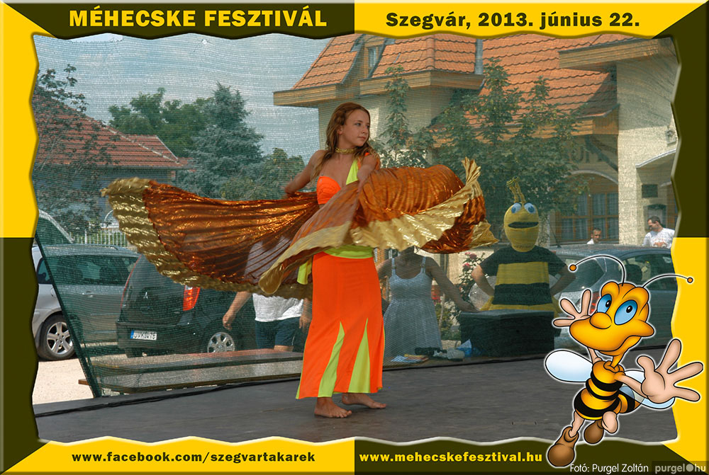 2013.06.22. 087 Szegvár és Vidéke Tak. Szöv. - Méhecske Fesztivál 2013. - Fotó:PURGEL ZOLTÁN©.jpg