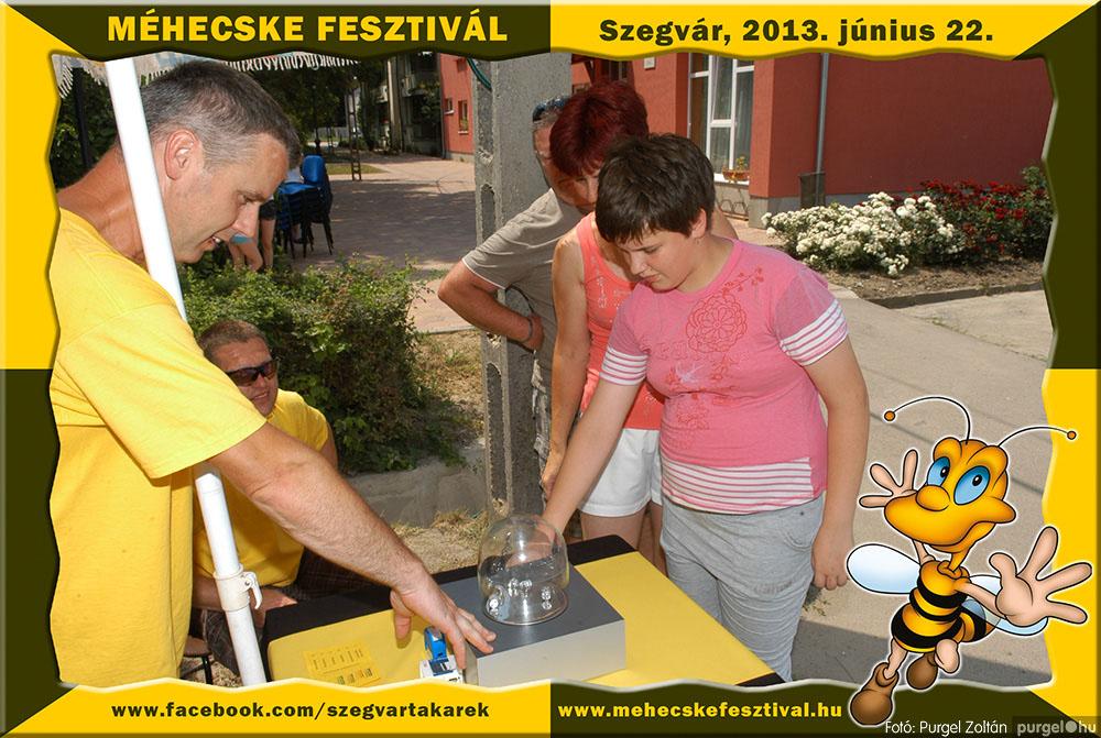 2013.06.22. 053 Szegvár és Vidéke Tak. Szöv. - Méhecske Fesztivál 2013. - Fotó:PURGEL ZOLTÁN©.jpg