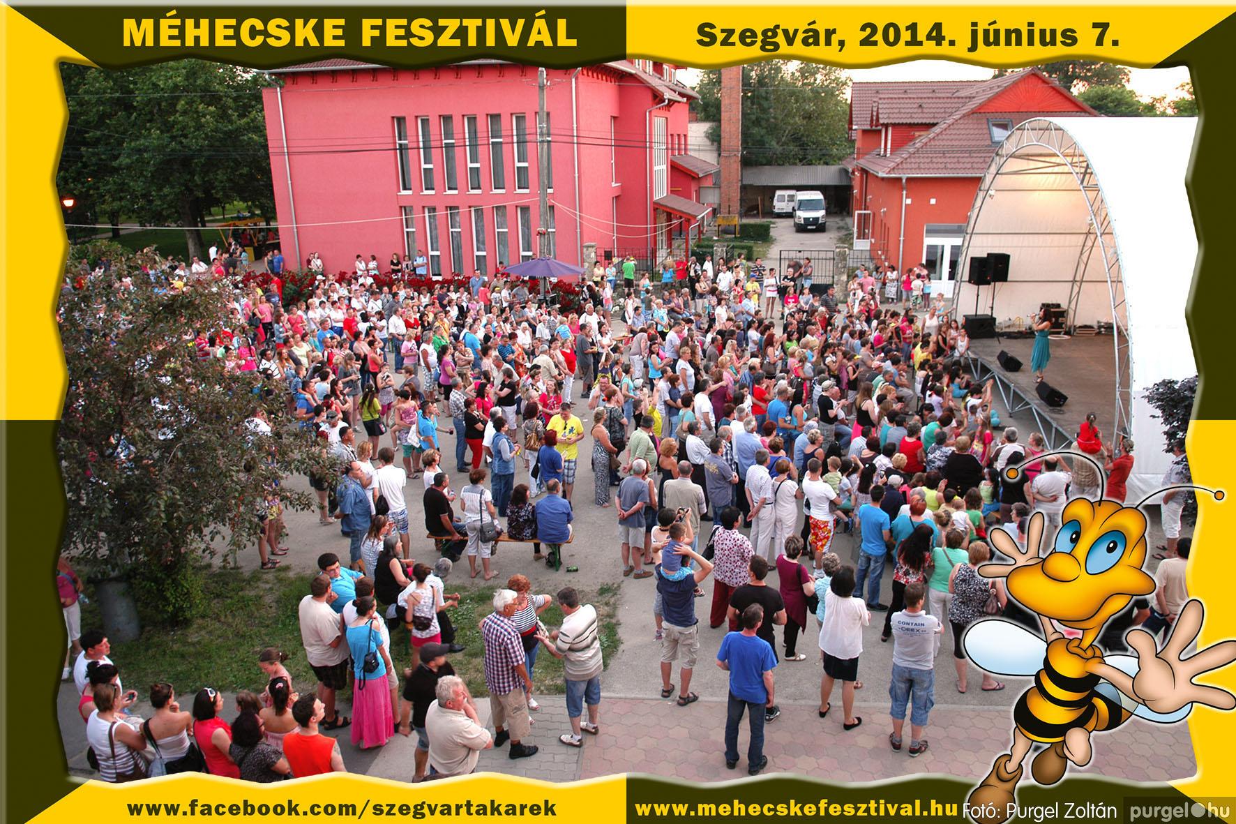 2014.06.07. 432 Szegvár és Vidéke Takarékszövetkezet - Méhecske Fesztivál 2014. - Fotó:PURGEL ZOLTÁN© 433.jpg