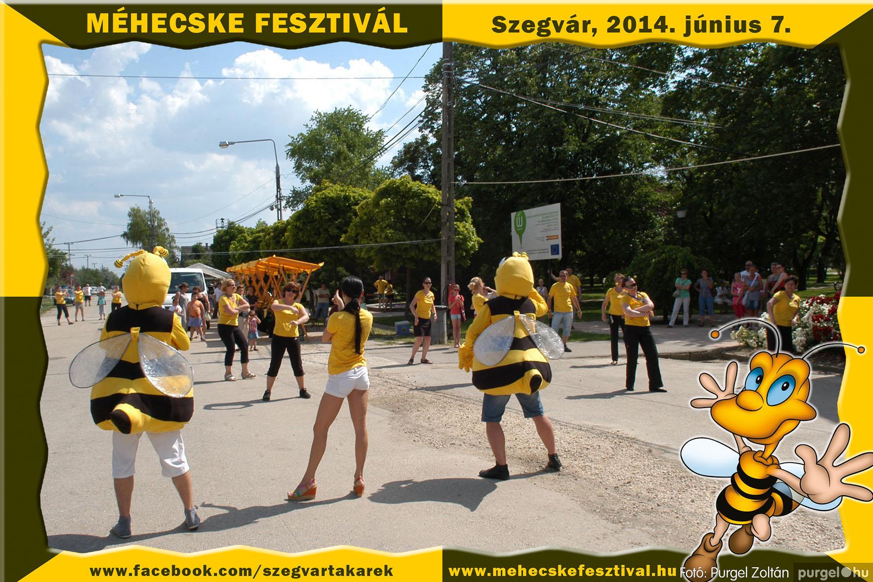 2014.06.07. 053 Szegvár és Vidéke Takarékszövetkezet - Méhecske Fesztivál 2014. - Fotó:PURGEL ZOLTÁN© 054.jpg