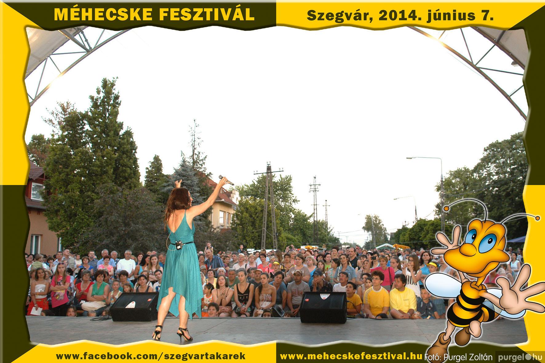 2014.06.07. 433 Szegvár és Vidéke Takarékszövetkezet - Méhecske Fesztivál 2014. - Fotó:PURGEL ZOLTÁN© 434.jpg
