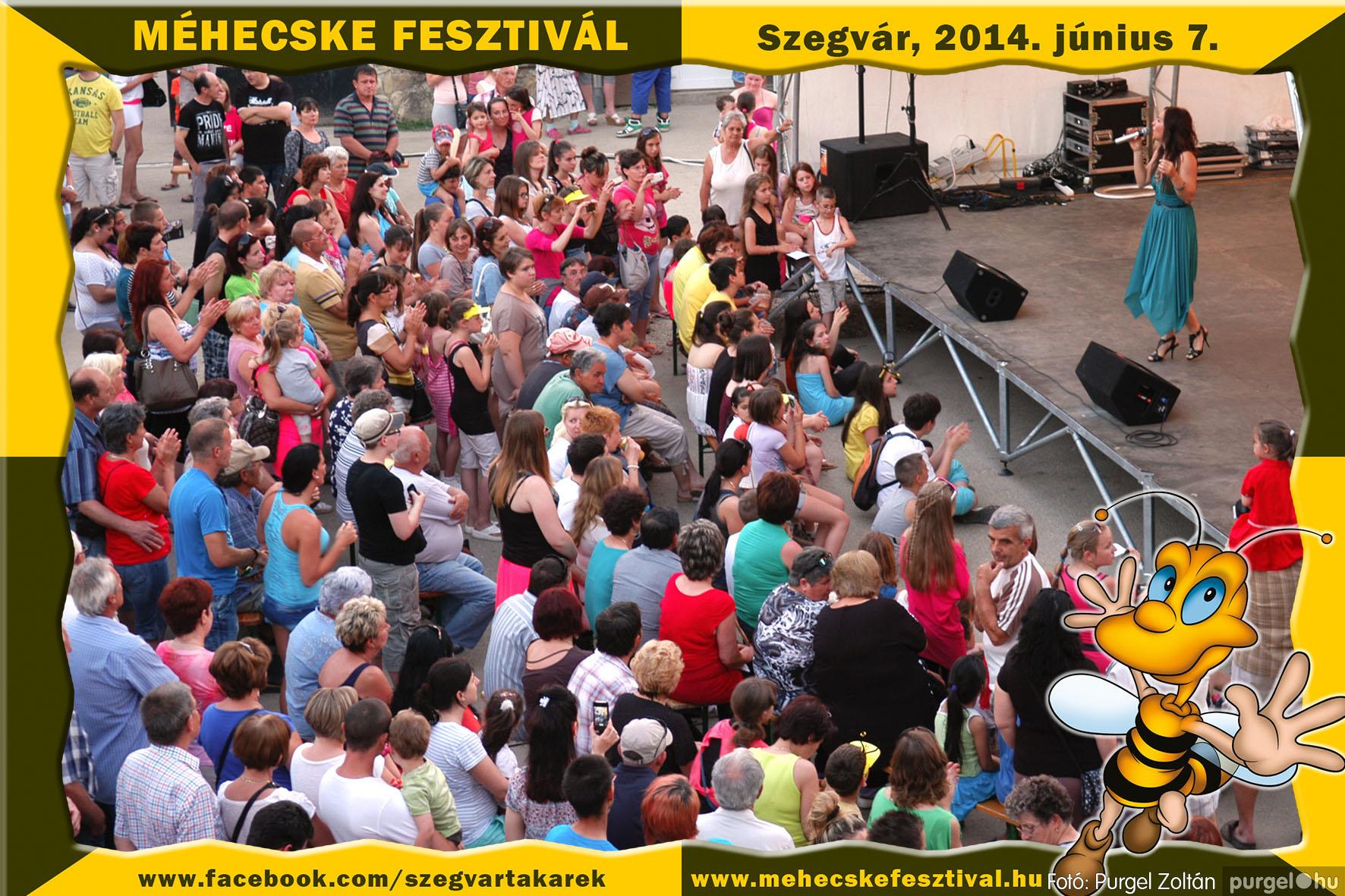 2014.06.07. 431 Szegvár és Vidéke Takarékszövetkezet - Méhecske Fesztivál 2014. - Fotó:PURGEL ZOLTÁN© 432.jpg