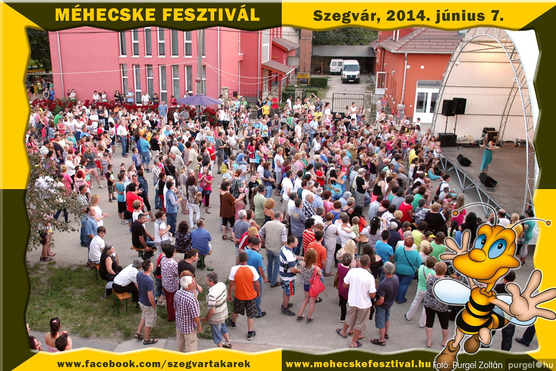 2014.06.07. 429 Szegvár és Vidéke Takarékszövetkezet - Méhecske Fesztivál 2014. - Fotó:PURGEL ZOLTÁN© 430.jpg