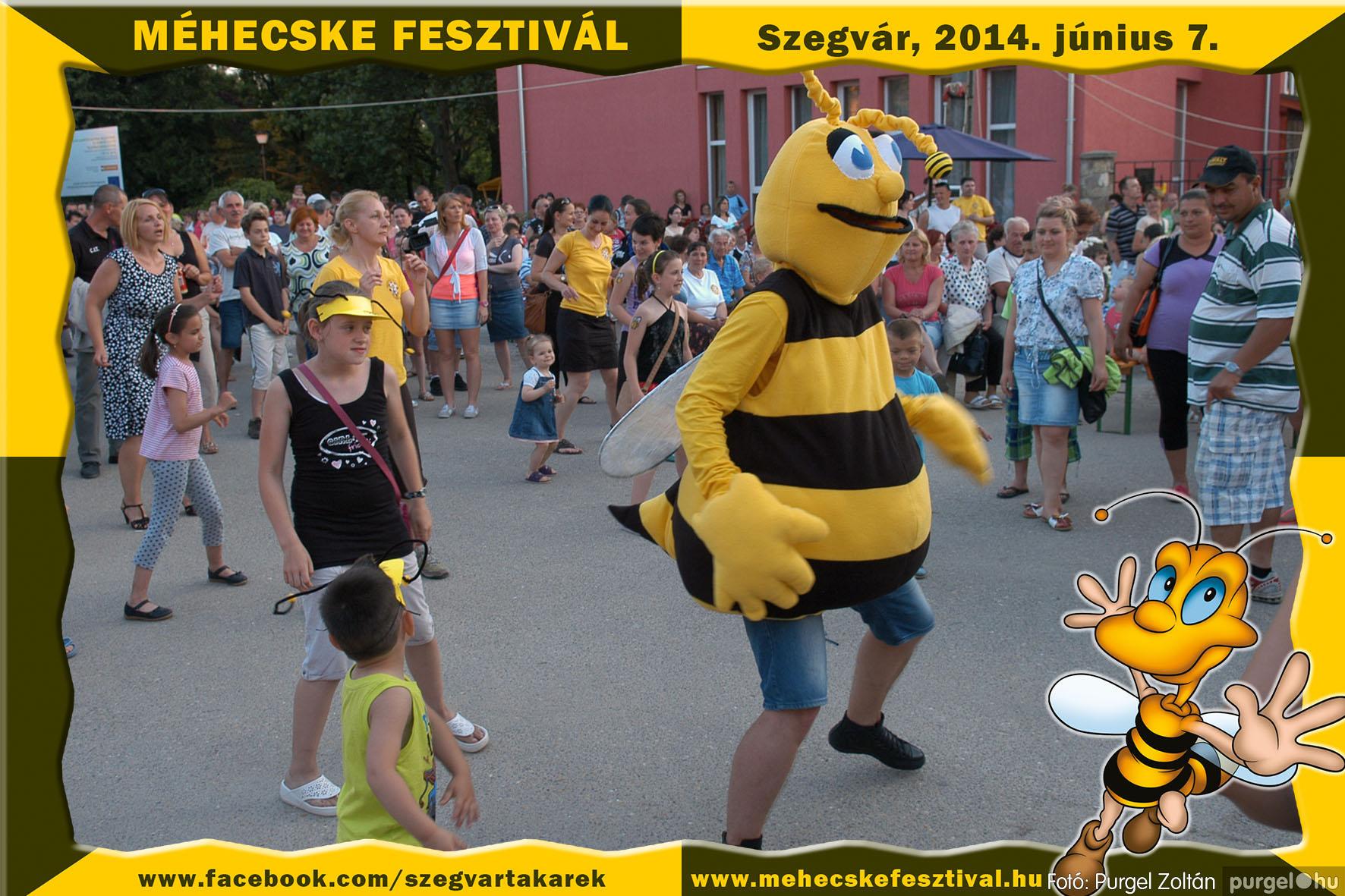 2014.06.07. 413 Szegvár és Vidéke Takarékszövetkezet - Méhecske Fesztivál 2014. - Fotó:PURGEL ZOLTÁN© 414.jpg