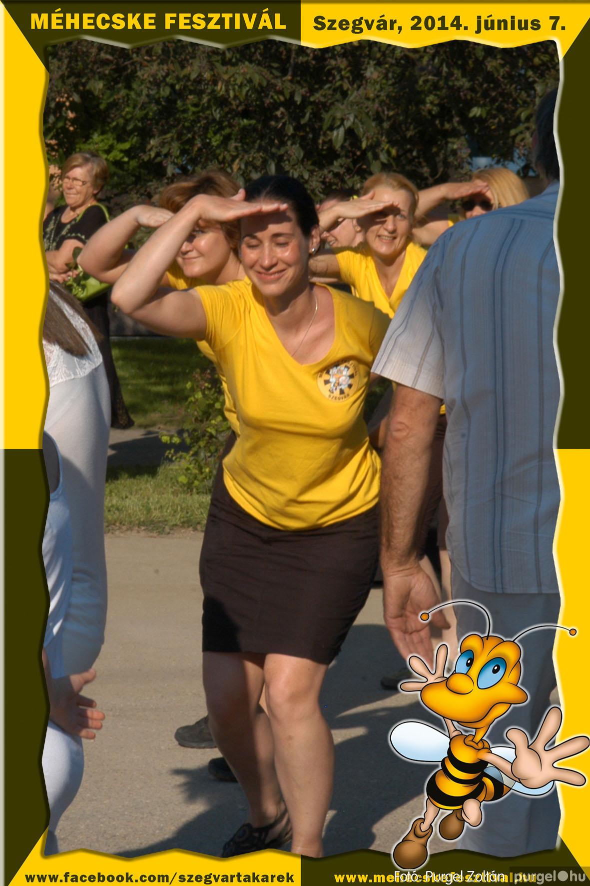 2014.06.07. 289 Szegvár és Vidéke Takarékszövetkezet - Méhecske Fesztivál 2014. - Fotó:PURGEL ZOLTÁN© 290.jpg
