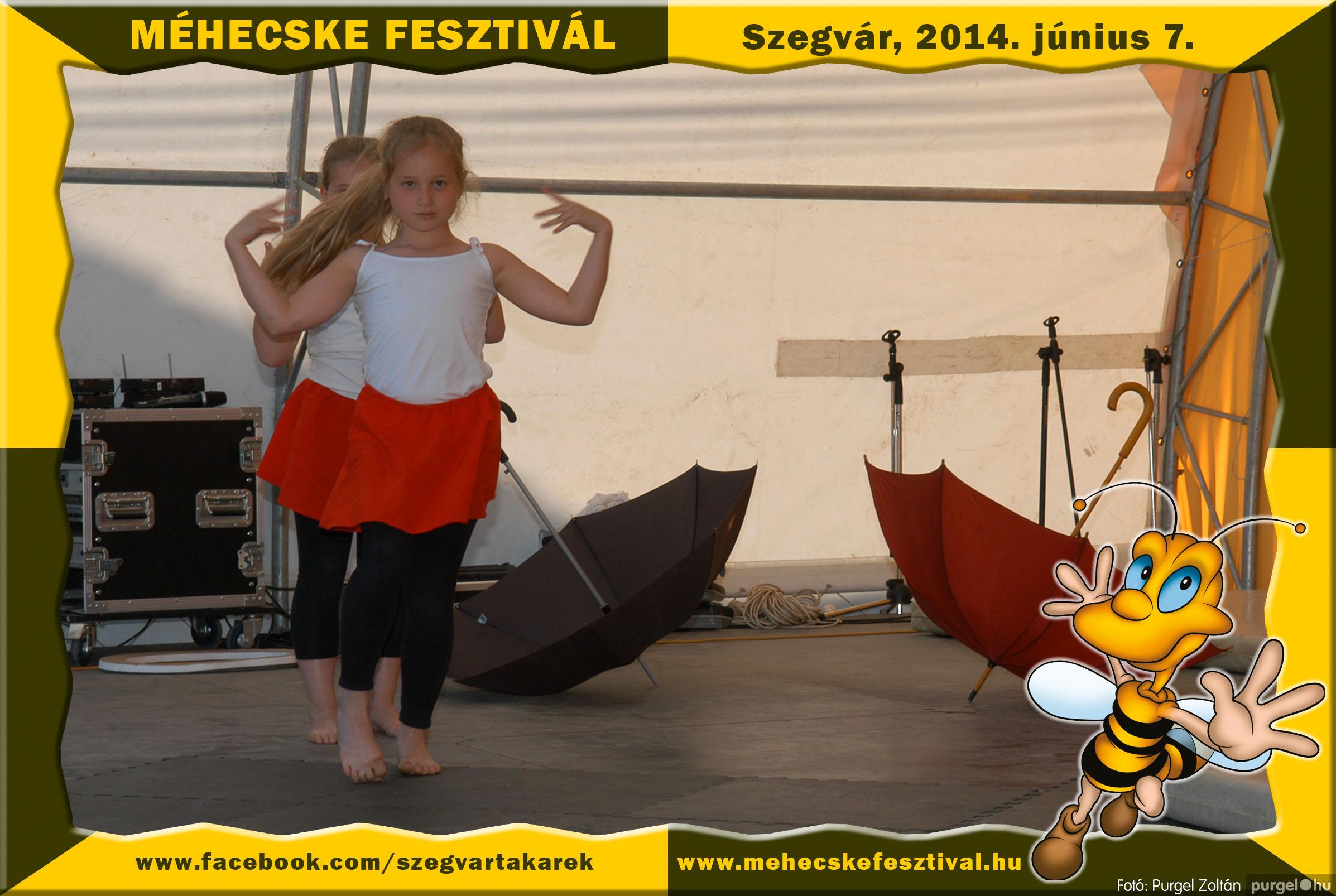 2014.06.07. 277 Szegvár és Vidéke Takarékszövetkezet - Méhecske Fesztivál 2014. - Fotó:PURGEL ZOLTÁN© 278.jpg
