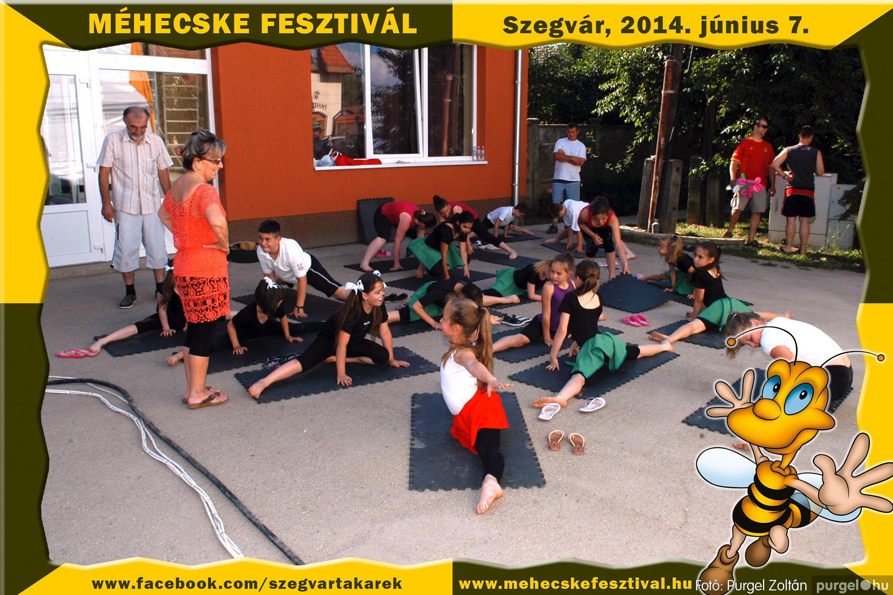 2014.06.07. 192 Szegvár és Vidéke Takarékszövetkezet - Méhecske Fesztivál 2014. - Fotó:PURGEL ZOLTÁN© 193.jpg