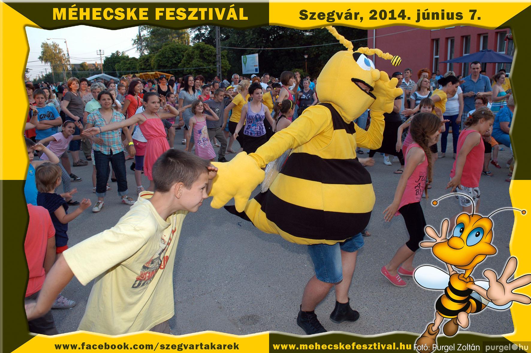 2014.06.07. 400 Szegvár és Vidéke Takarékszövetkezet - Méhecske Fesztivál 2014. - Fotó:PURGEL ZOLTÁN© 401.jpg