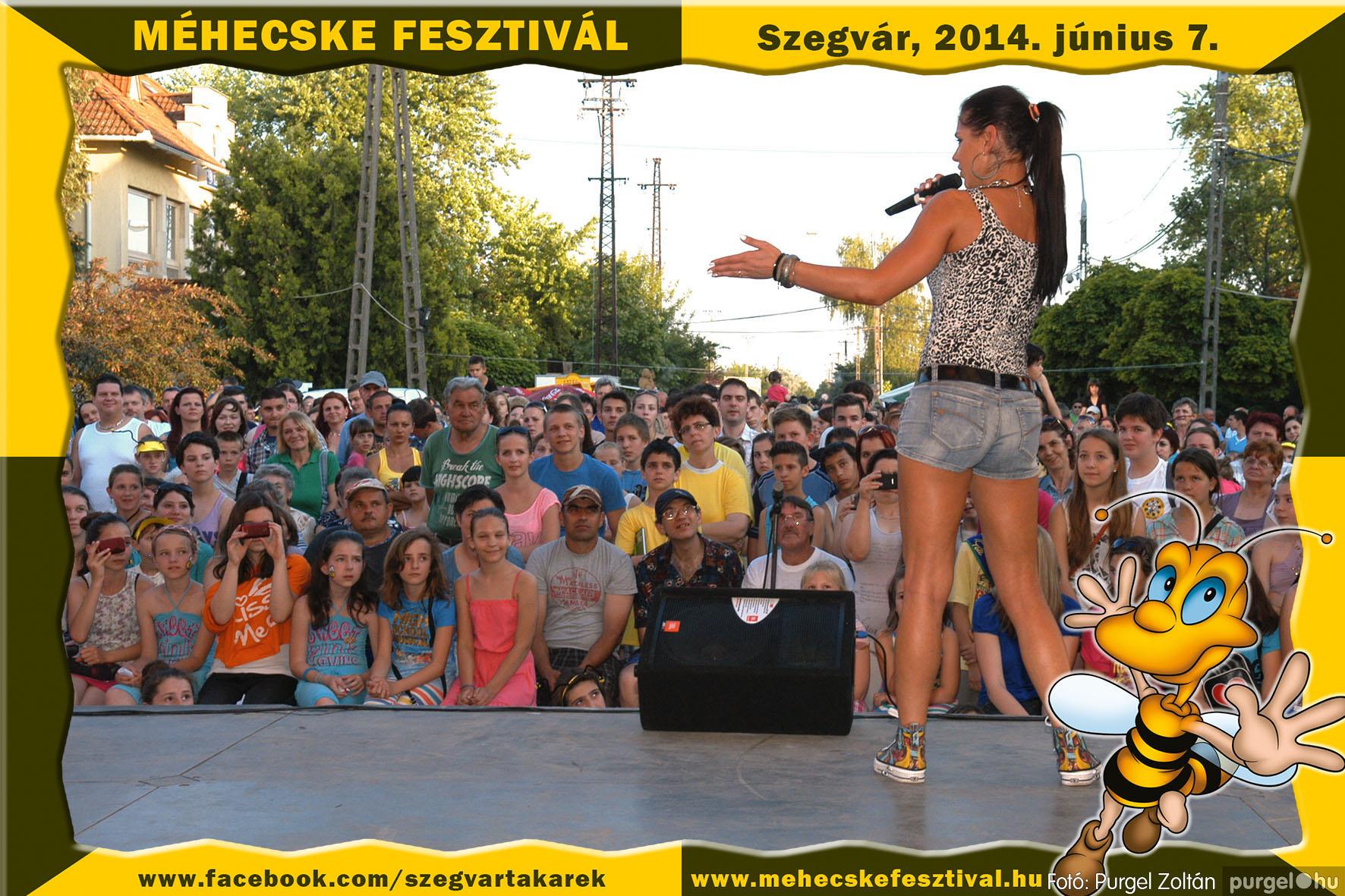 2014.06.07. 376 Szegvár és Vidéke Takarékszövetkezet - Méhecske Fesztivál 2014. - Fotó:PURGEL ZOLTÁN© 377.jpg