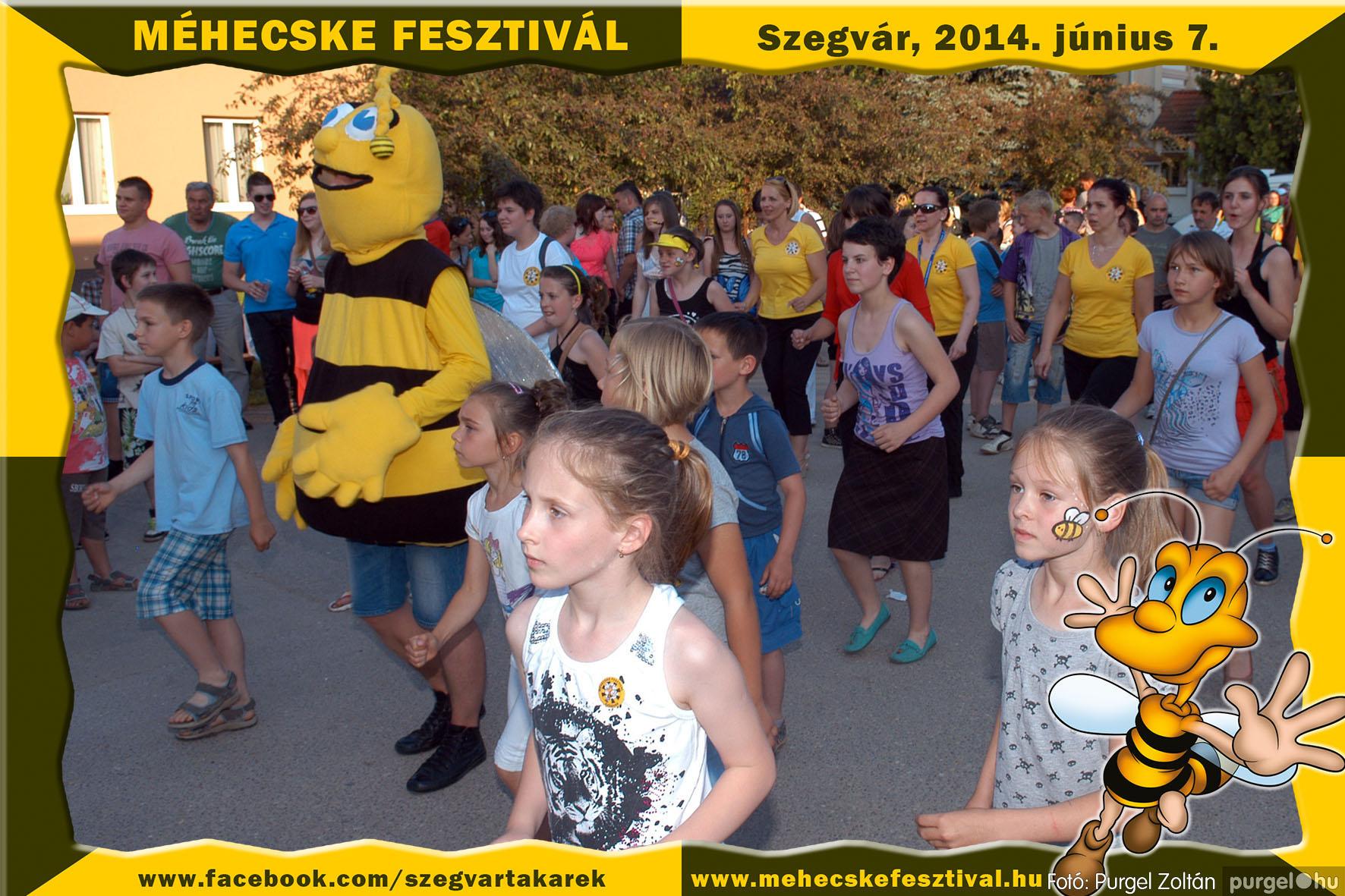 2014.06.07. 361 Szegvár és Vidéke Takarékszövetkezet - Méhecske Fesztivál 2014. - Fotó:PURGEL ZOLTÁN© 362.jpg
