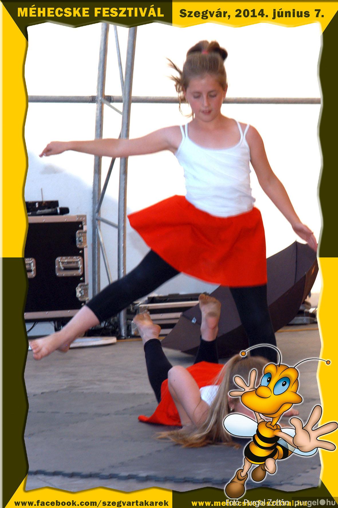 2014.06.07. 245 Szegvár és Vidéke Takarékszövetkezet - Méhecske Fesztivál 2014. - Fotó:PURGEL ZOLTÁN© 246.jpg