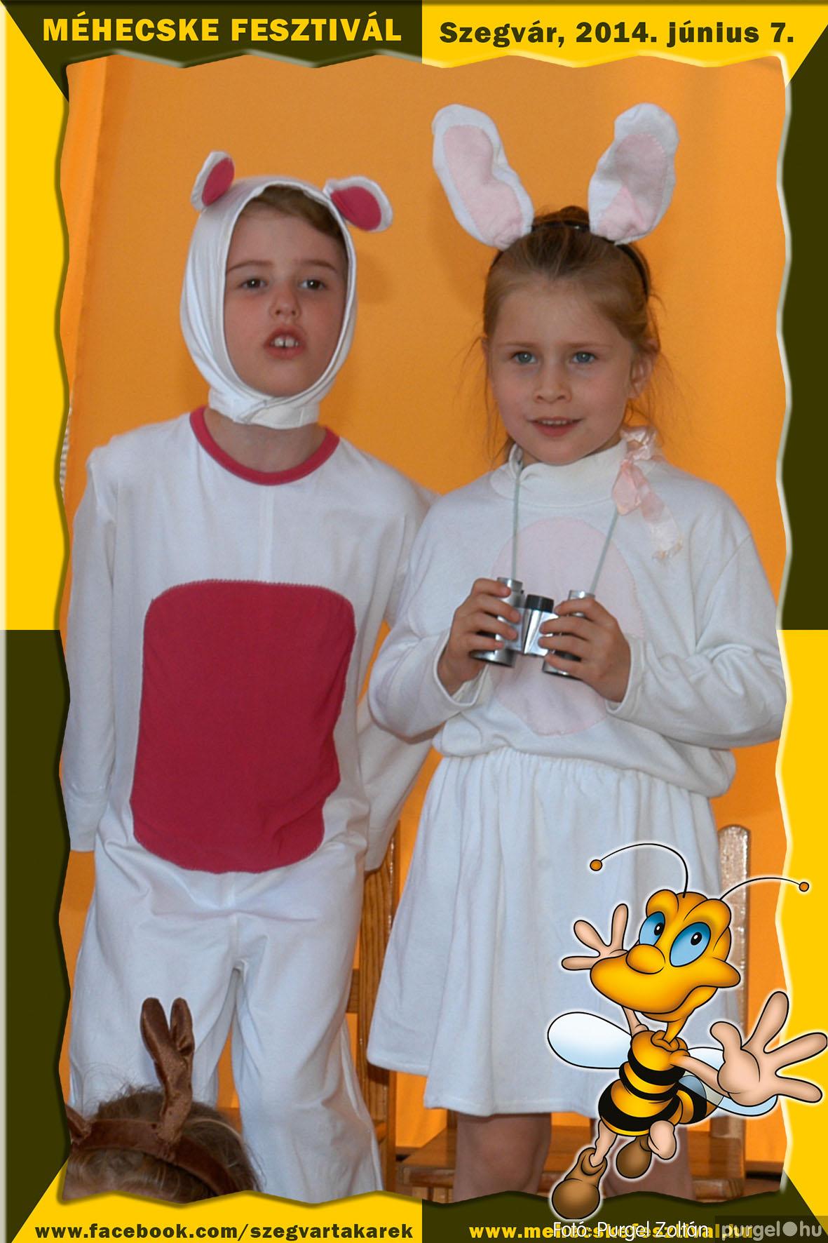 2014.06.07. 161 Szegvár és Vidéke Takarékszövetkezet - Méhecske Fesztivál 2014. - Fotó:PURGEL ZOLTÁN© 162.jpg