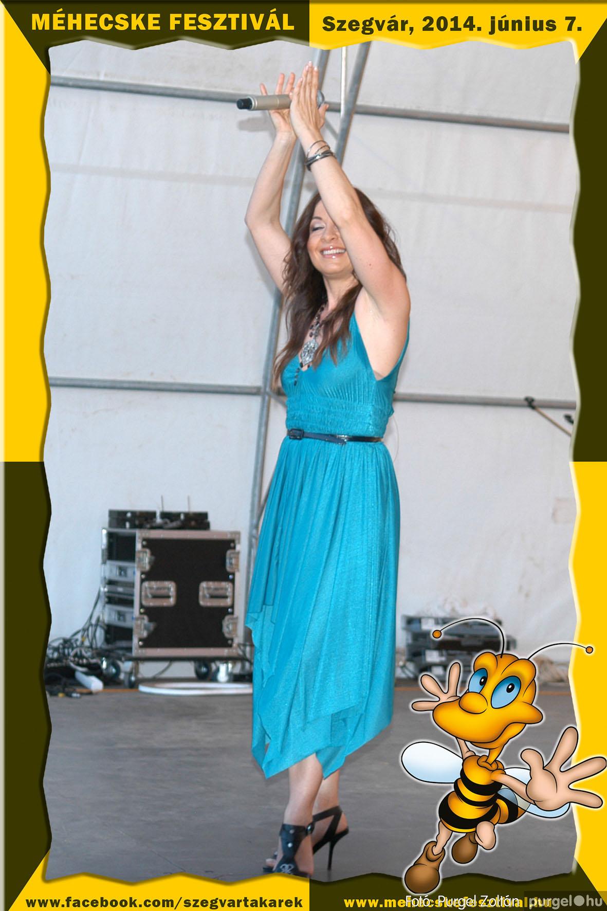 2014.06.07. 426 Szegvár és Vidéke Takarékszövetkezet - Méhecske Fesztivál 2014. - Fotó:PURGEL ZOLTÁN© 427.jpg