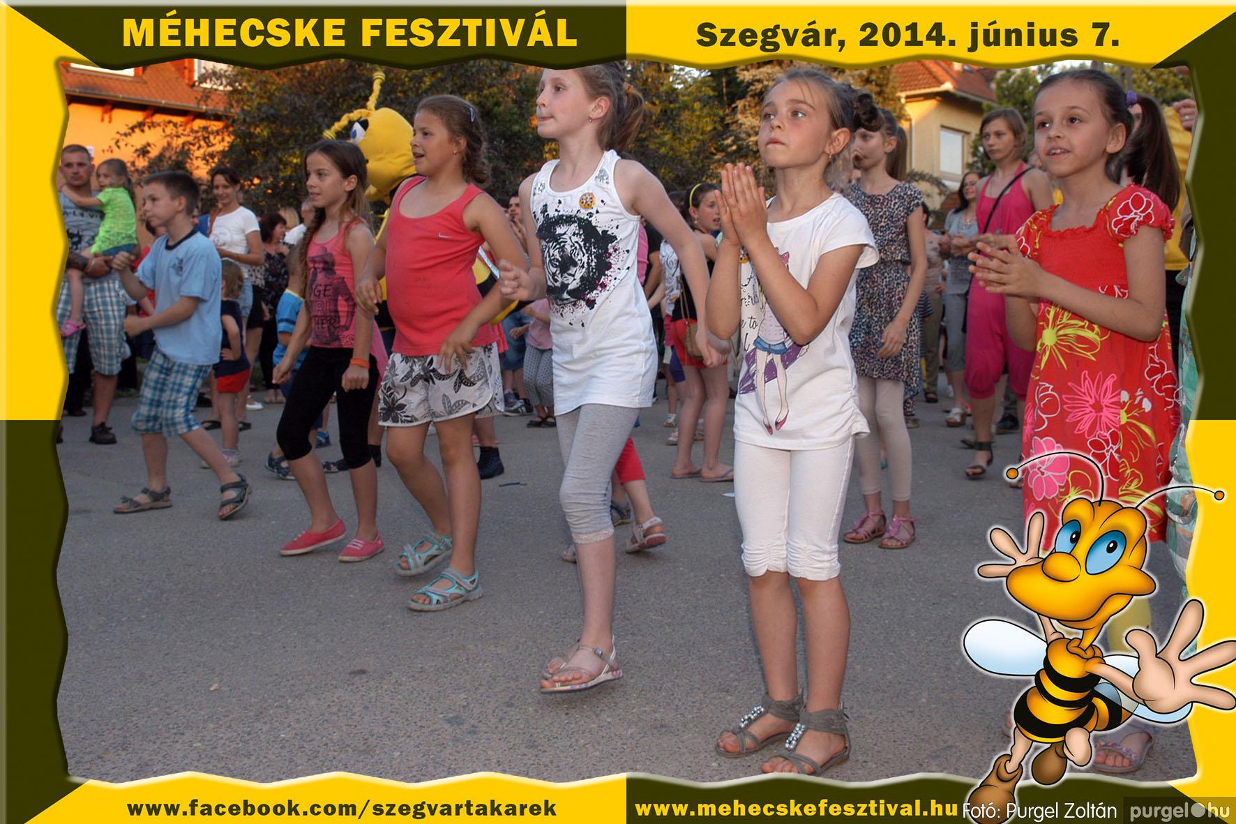 2014.06.07. 403 Szegvár és Vidéke Takarékszövetkezet - Méhecske Fesztivál 2014. - Fotó:PURGEL ZOLTÁN© 404.jpg