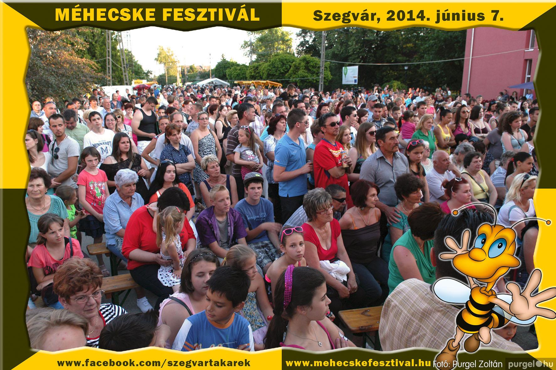 2014.06.07. 381 Szegvár és Vidéke Takarékszövetkezet - Méhecske Fesztivál 2014. - Fotó:PURGEL ZOLTÁN© 382.jpg