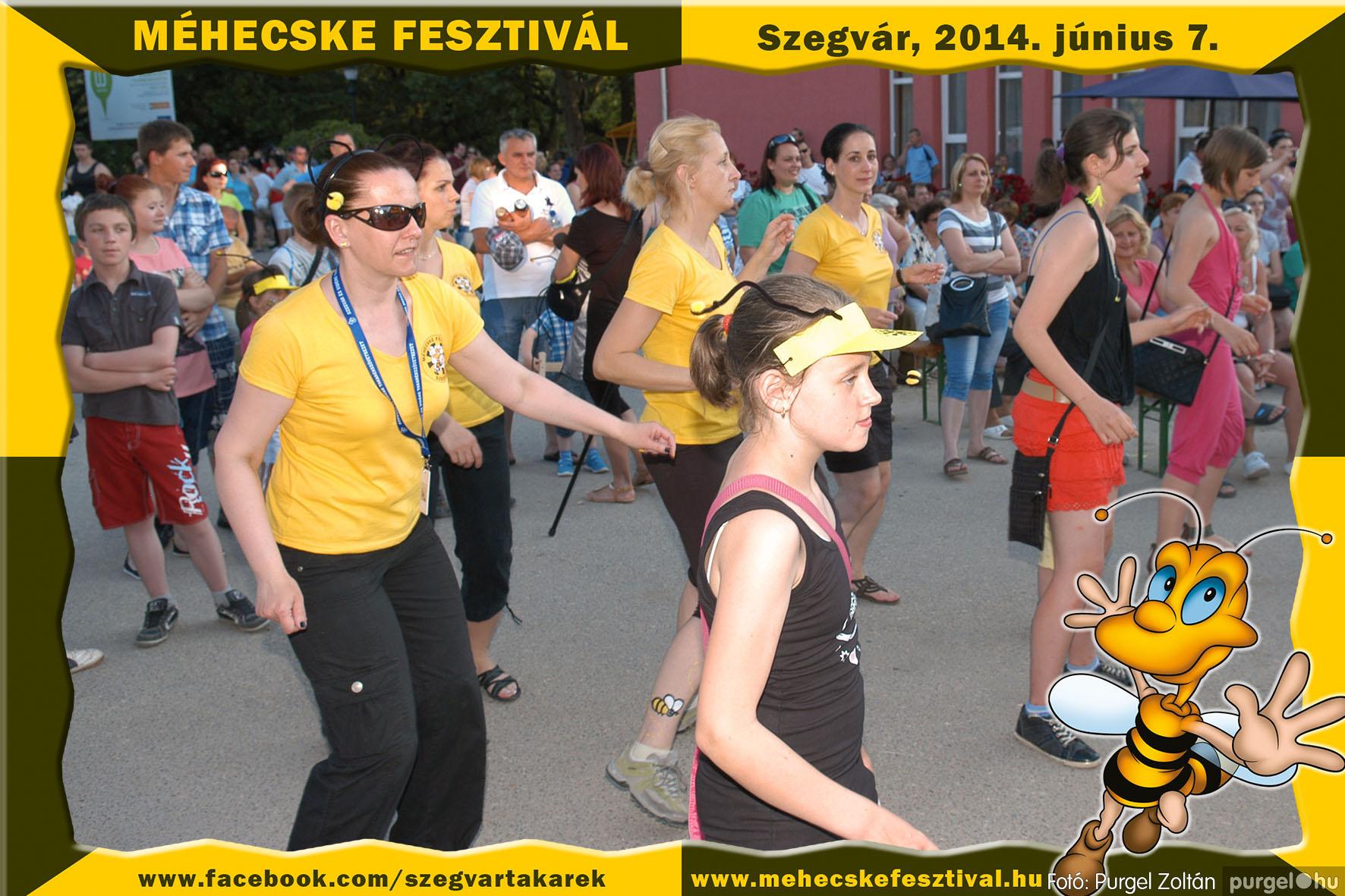 2014.06.07. 372 Szegvár és Vidéke Takarékszövetkezet - Méhecske Fesztivál 2014. - Fotó:PURGEL ZOLTÁN© 373.jpg