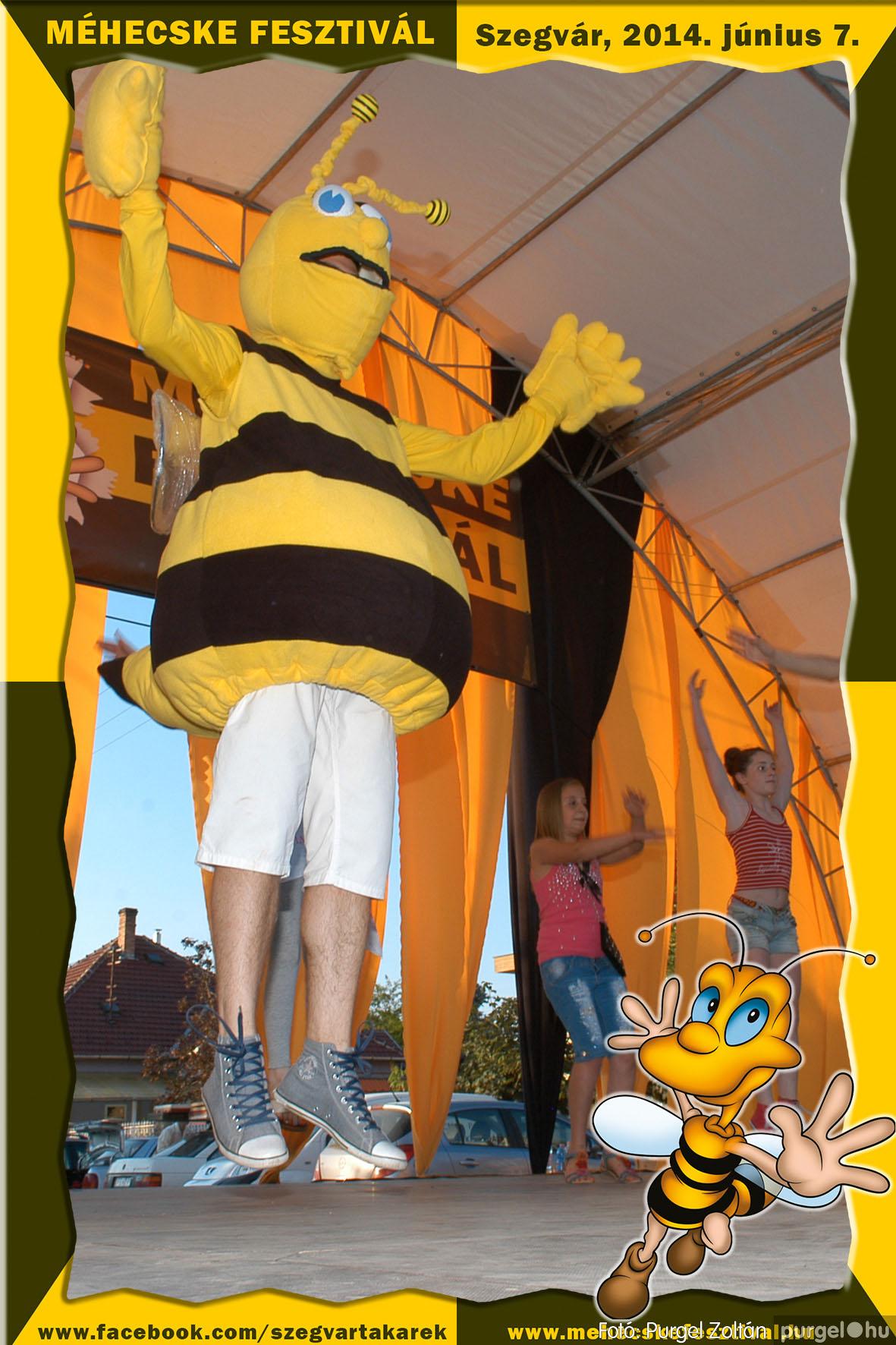 2014.06.07. 359 Szegvár és Vidéke Takarékszövetkezet - Méhecske Fesztivál 2014. - Fotó:PURGEL ZOLTÁN© 360.jpg