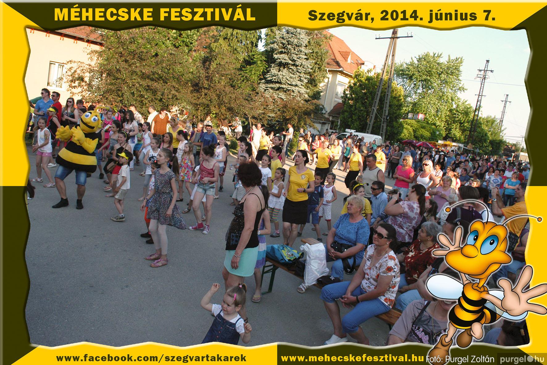 2014.06.07. 347 Szegvár és Vidéke Takarékszövetkezet - Méhecske Fesztivál 2014. - Fotó:PURGEL ZOLTÁN© 348.jpg
