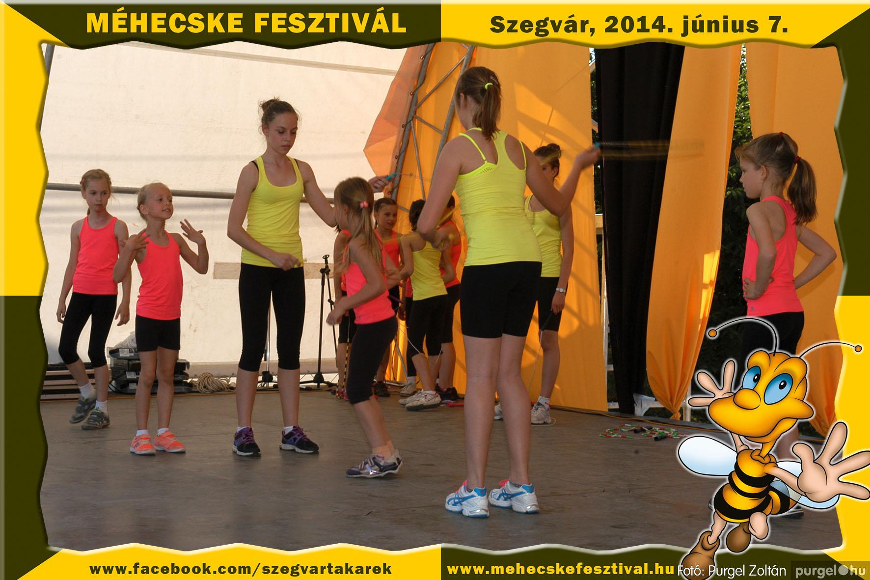 2014.06.07. 219 Szegvár és Vidéke Takarékszövetkezet - Méhecske Fesztivál 2014. - Fotó:PURGEL ZOLTÁN© 220.jpg