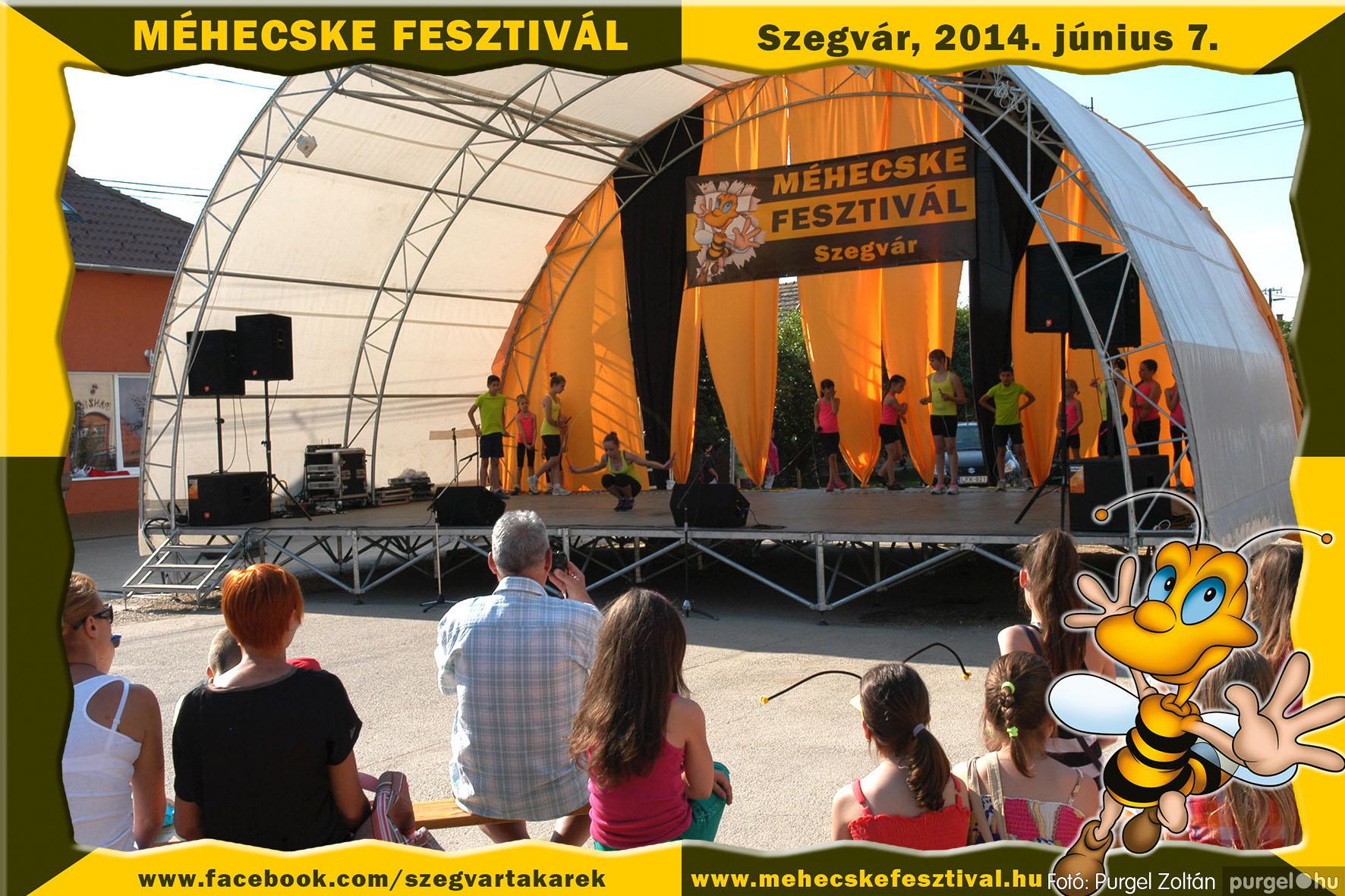 2014.06.07. 211 Szegvár és Vidéke Takarékszövetkezet - Méhecske Fesztivál 2014. - Fotó:PURGEL ZOLTÁN© 212.jpg