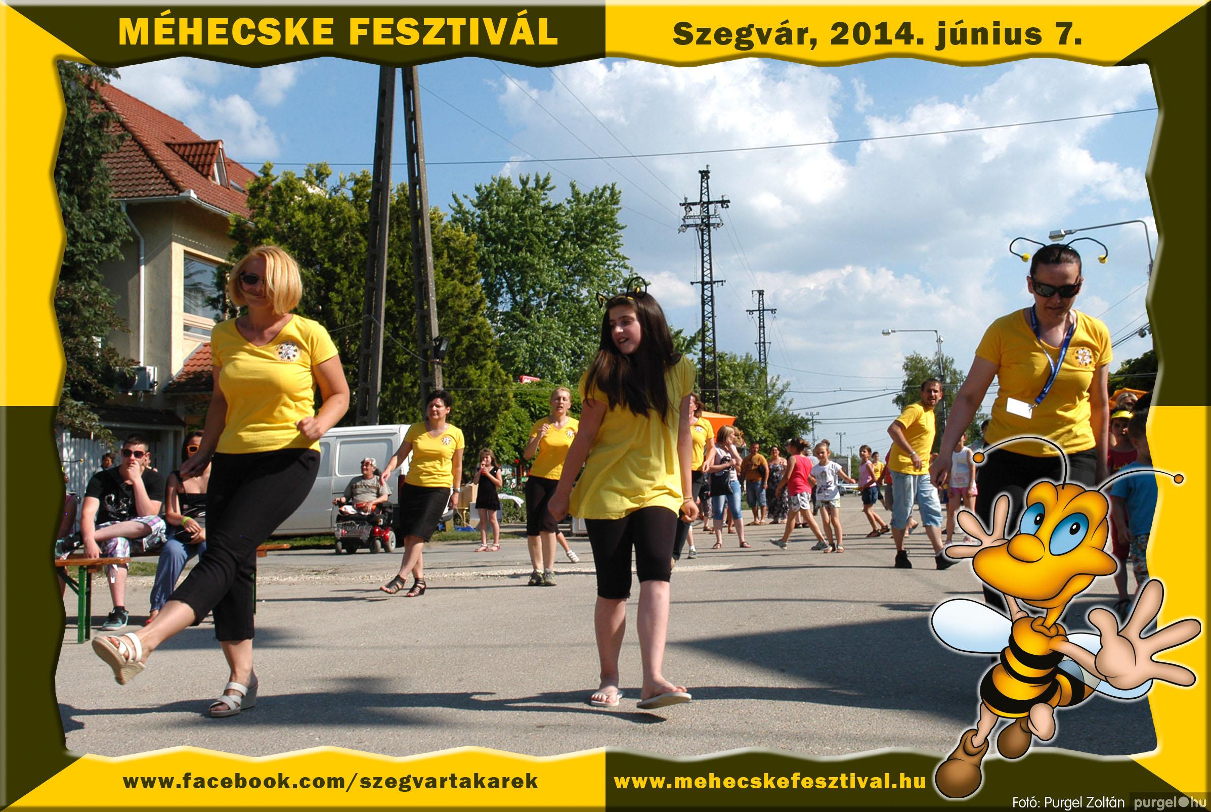 2014.06.07. 168 Szegvár és Vidéke Takarékszövetkezet - Méhecske Fesztivál 2014. - Fotó:PURGEL ZOLTÁN© 169.jpg