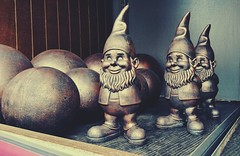 Gnomes In Need Of A Home