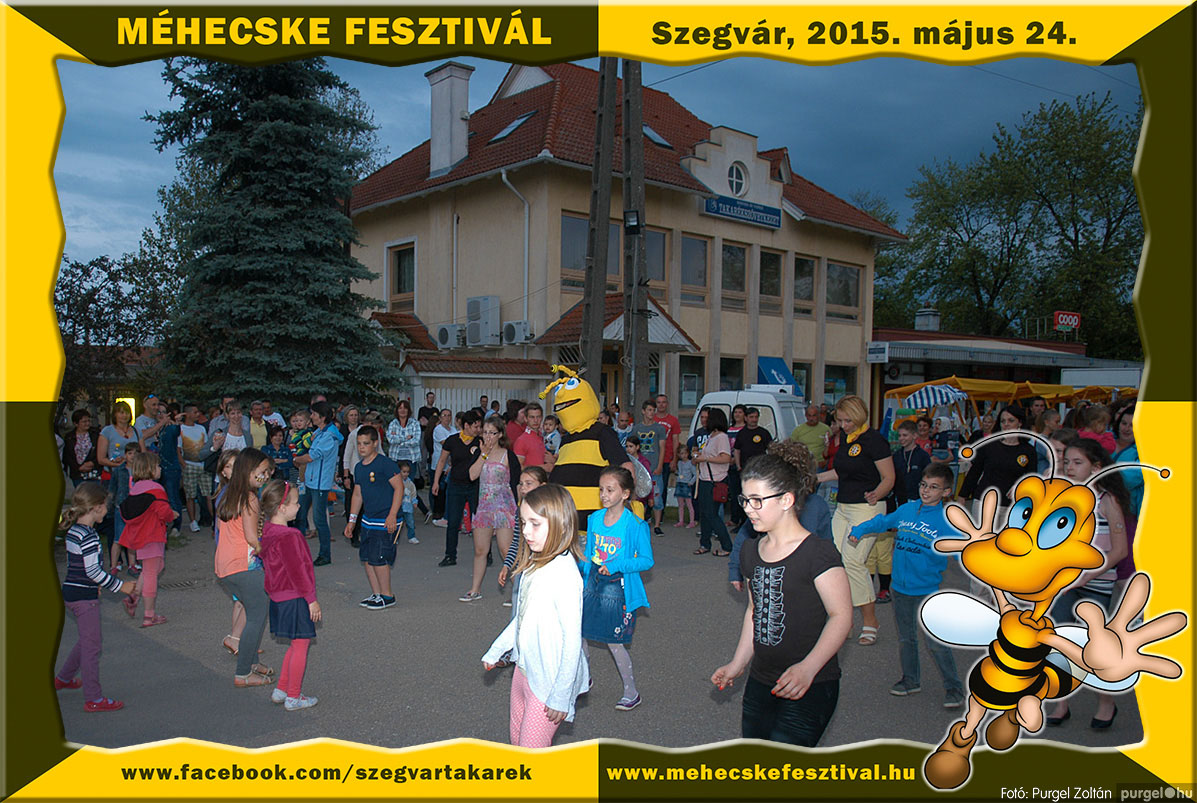 2015.05.24. 247 Szegvár és Vidéke Tak. Szöv. - Méhecske Fesztivál 2015. - Fotó:PURGEL ZOLTÁN©.jpg