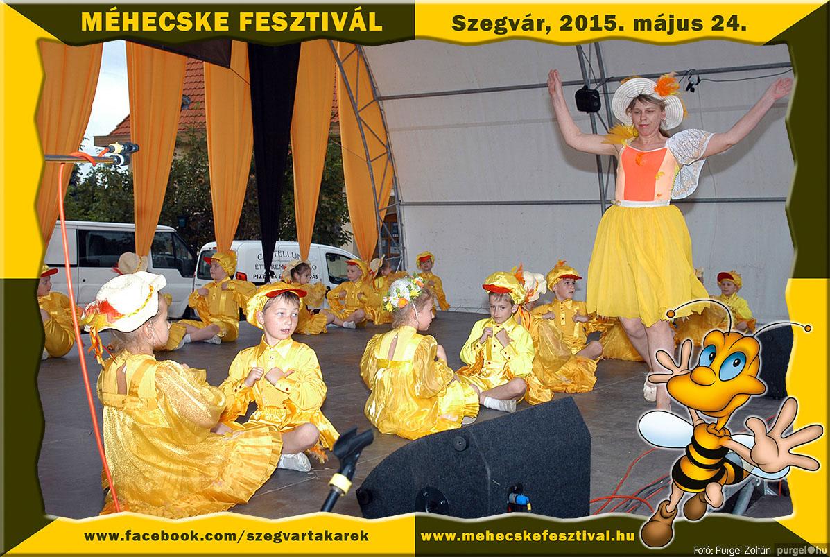 2015.05.24. 213 Szegvár és Vidéke Tak. Szöv. - Méhecske Fesztivál 2015. - Fotó:PURGEL ZOLTÁN©.jpg