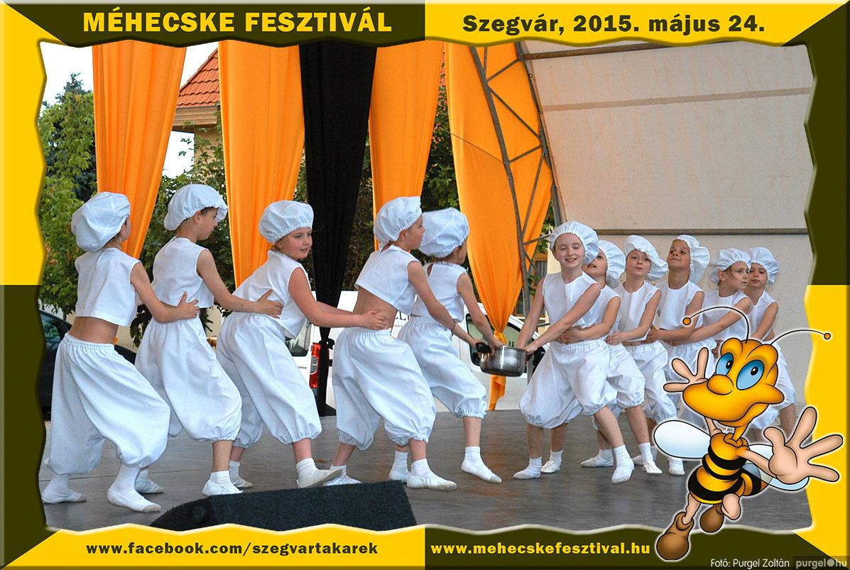 2015.05.24. 212 Szegvár és Vidéke Tak. Szöv. - Méhecske Fesztivál 2015. - Fotó:PURGEL ZOLTÁN©.jpg
